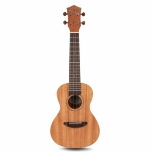 Top 5 Ukulele At Low Price In Chandigarh
