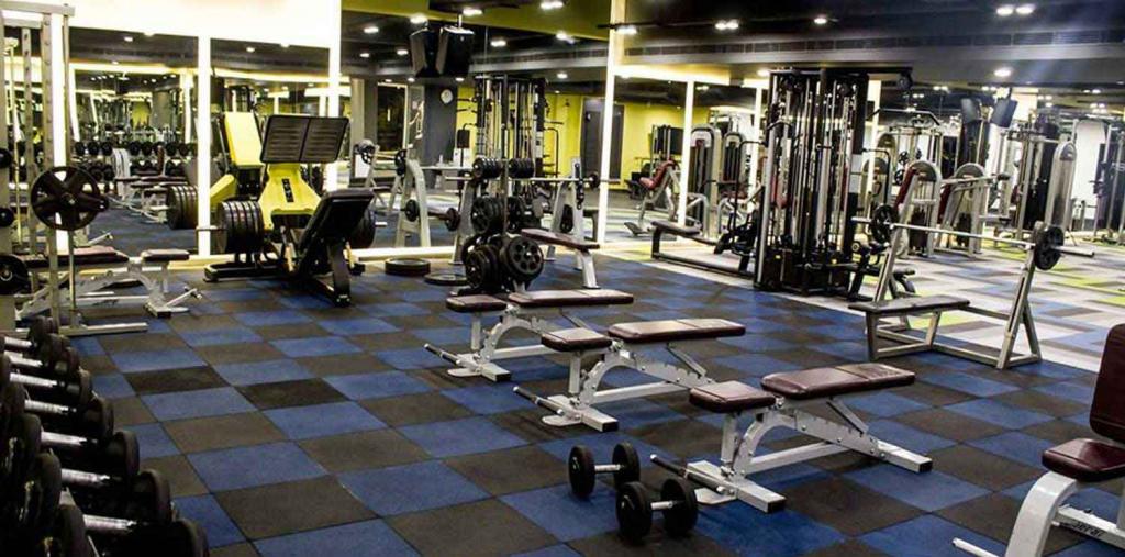 Gym in chandigarh