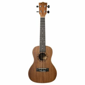 Ukulele At Low Price In Chandigarh
