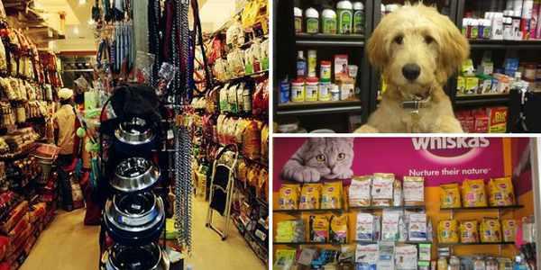 Pet Shops in Chandigarh